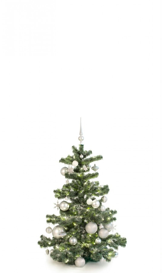 Basic Tree Bright and Silver 120cm-1424